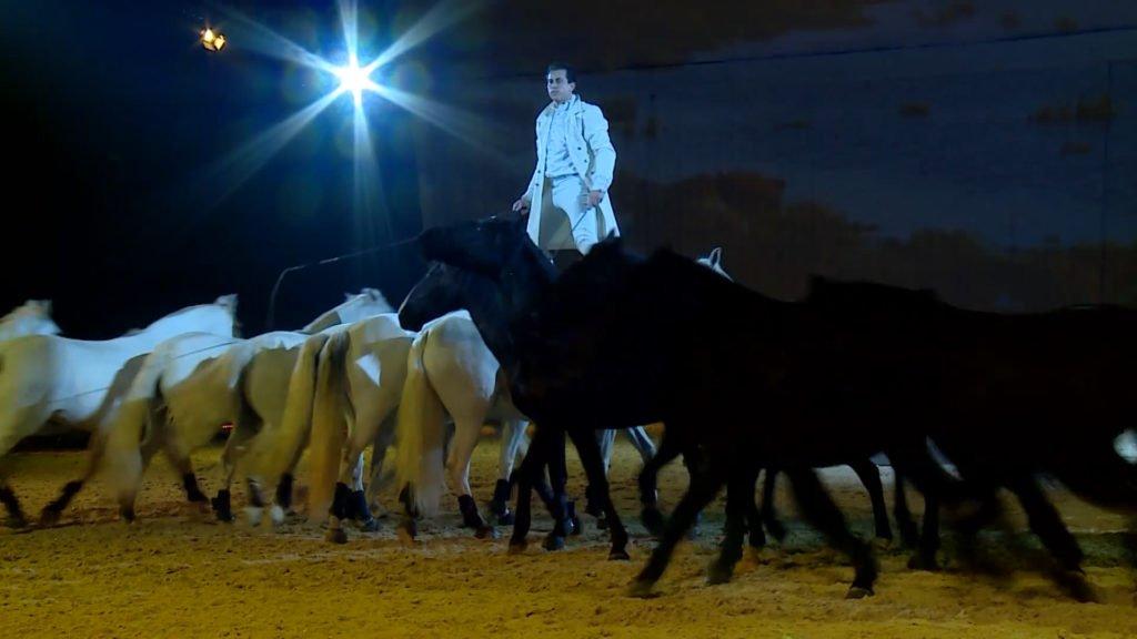 Les Crinières d'Or consacrent la complicité entre l'homme et le cheval