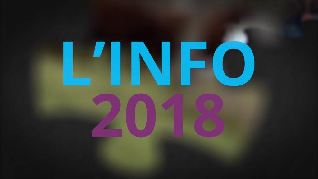Rétrospective de l'info de l'année 2018