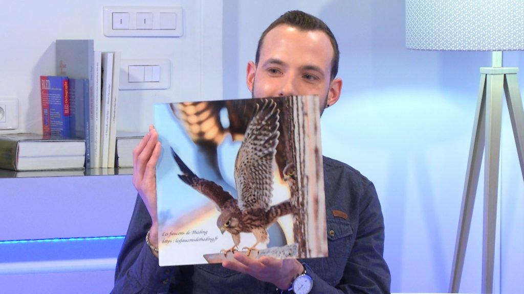 Cyril Bour fait le point sur la situation des faucons dans le Grand Est