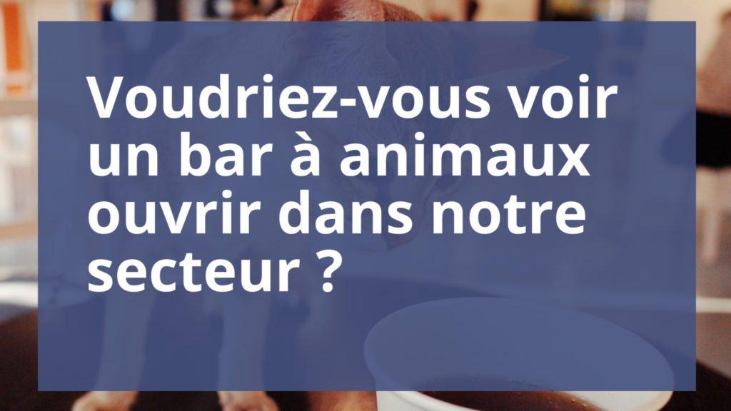 Voudriez-vous voir un bar à animaux ouvrir dans notre secteur ?