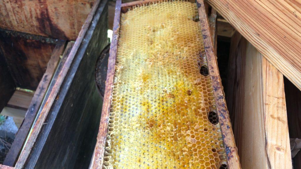 Miel : meilleur étiquetage mais mauvaise récolte