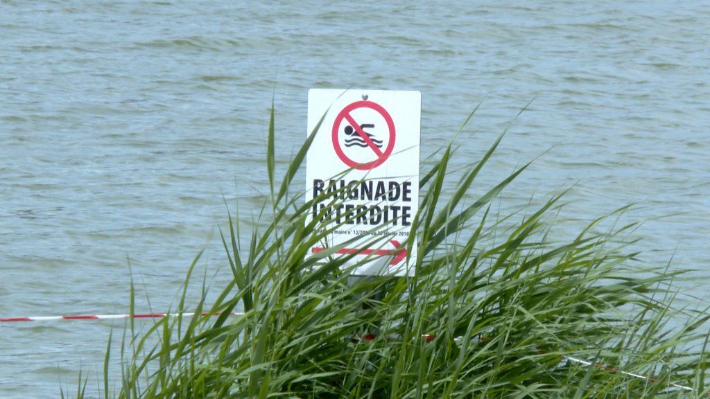 La baignade est interdite à l'étang de Hasselfurth à Bitche
