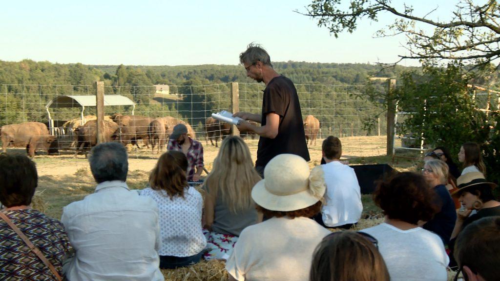 Une lecture face aux bisons