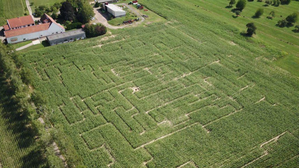 Un labyrinthe à la ferme du Kleinwald