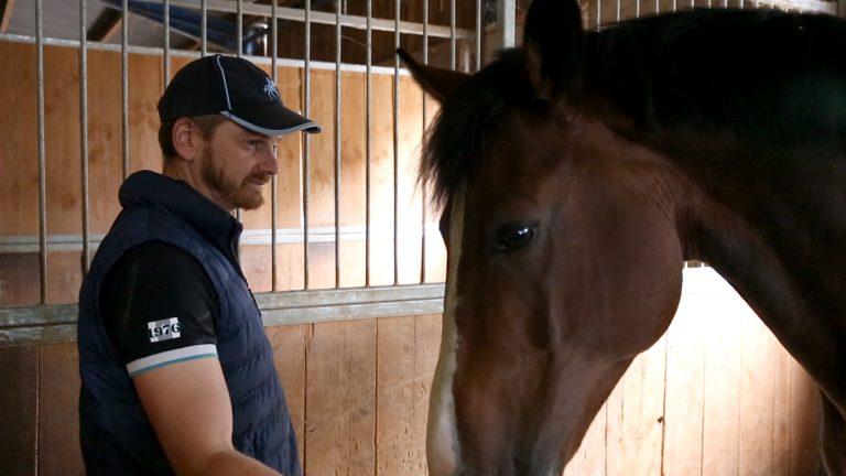 Guillaume Mayer et la passion des chevaux