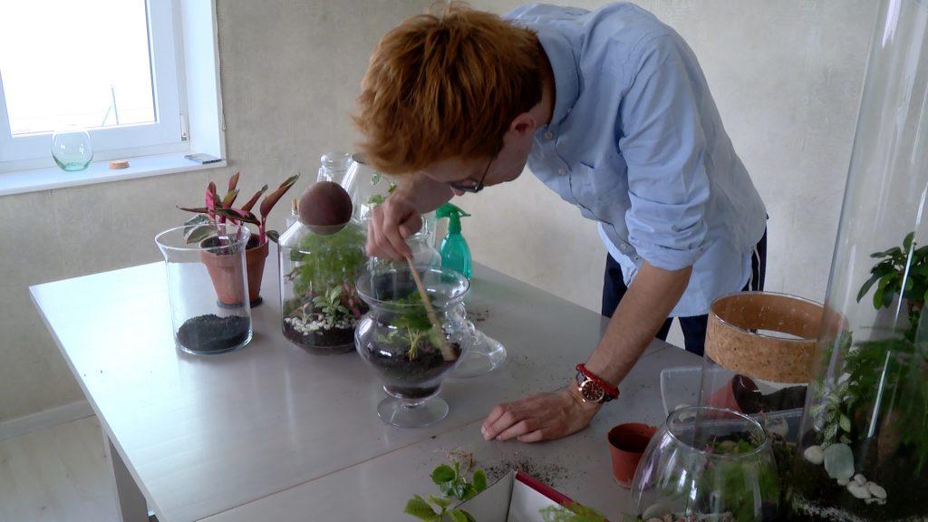 Pierre, le plante addict'