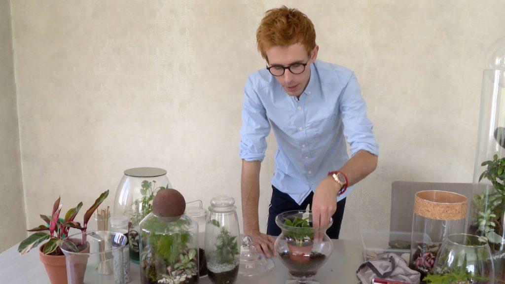Comment réaliser un terrarium ?