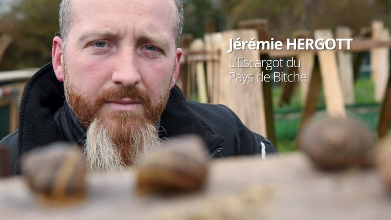 Jérémie Hergott, l'héliciculteur du Pays de Bitche
