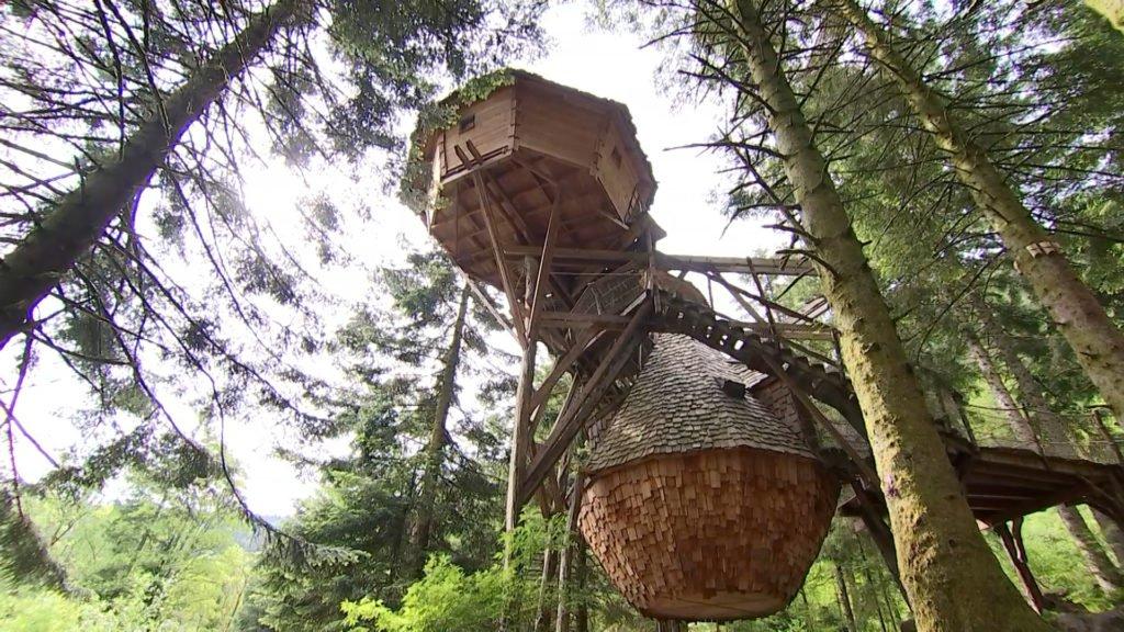 Besoin d'évasion dans les Vosges ?