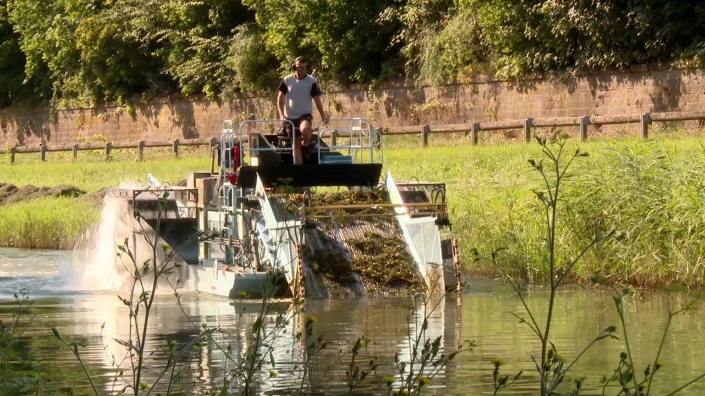 De drôles de bateaux sur le canal