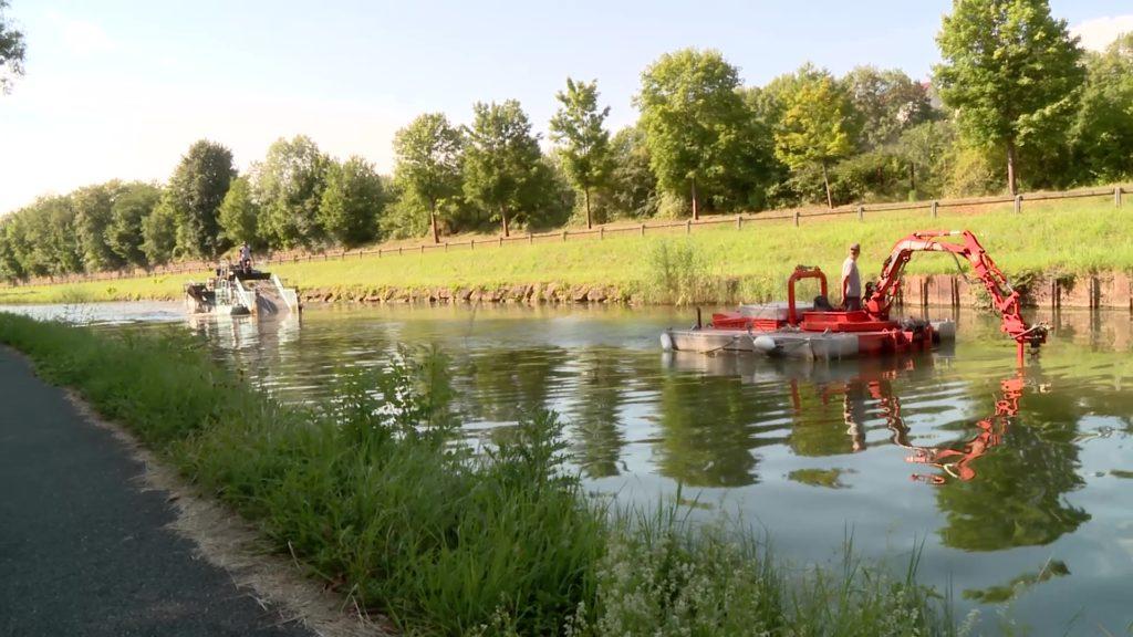 Nettoyage des algues sur le canal