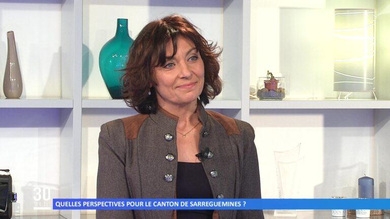 Quelles perspectives pour le canton de Sarreguemines ?