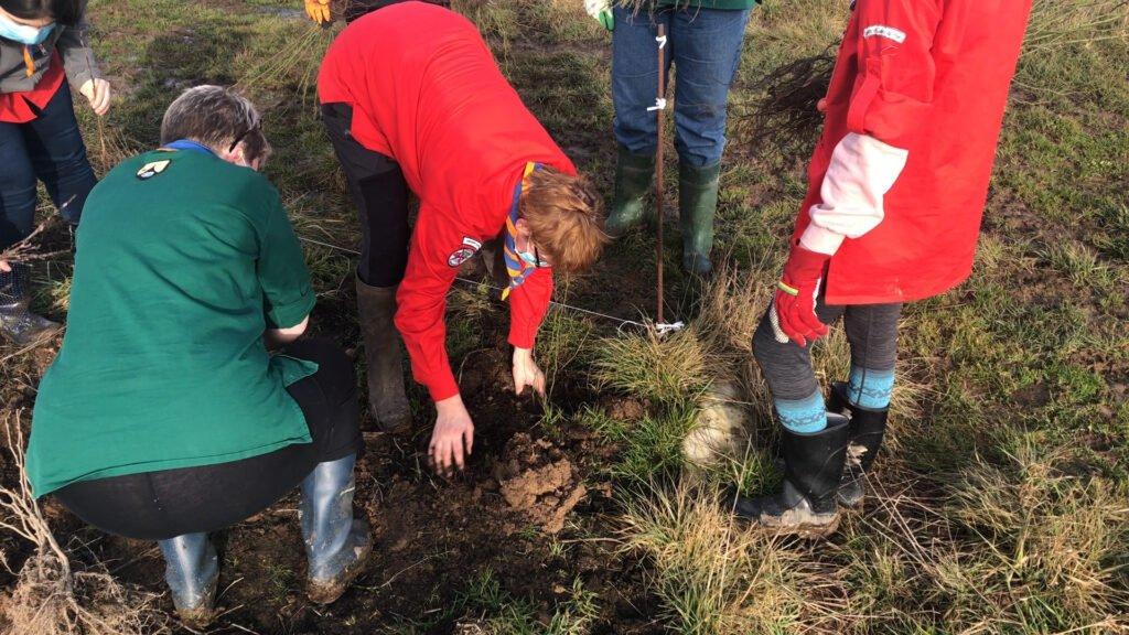 Chantier participatif : planter 1000 arbres a la ferme du Vieux Poirier