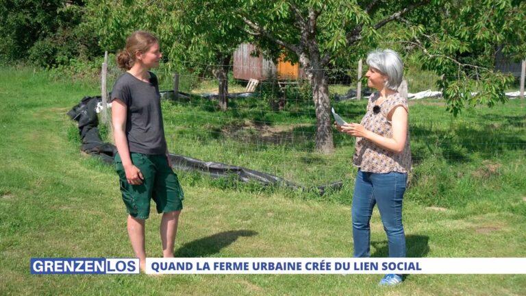 Grenzenlos : Quand la ferme urbaine crée du lien social
