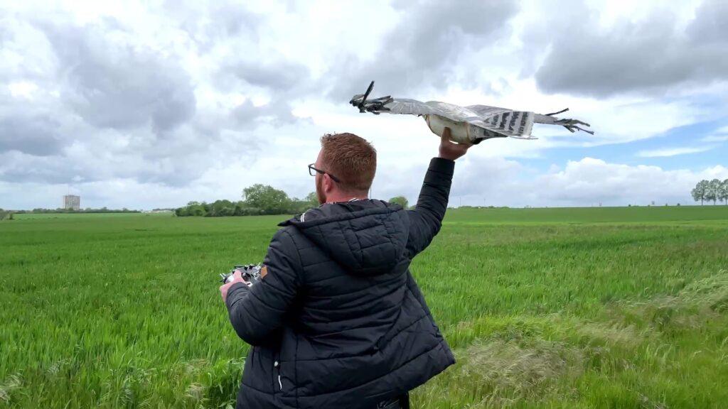 Drone-Faucon, le nouvel épouvantail