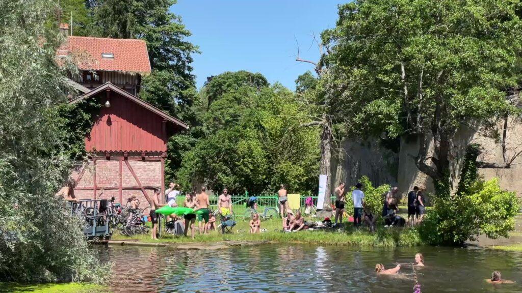 Une baignade naturelle et militante dans le canal de Jouy